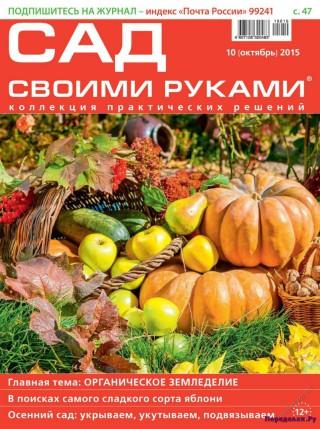 Сад своими руками 10 октябрь 2015