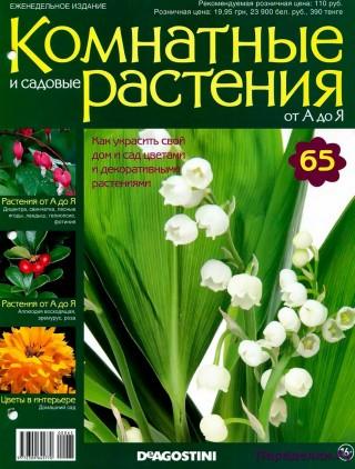 Комнатные и садовые растения от А до Я 65 15