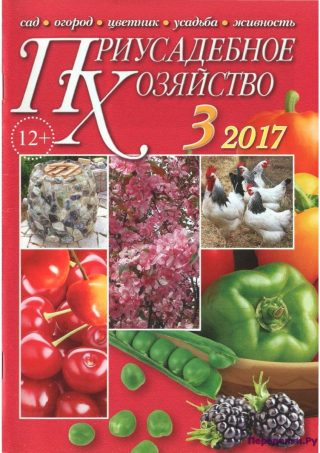 Приусадебное хозяйство 3 2017