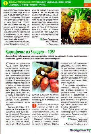Из 5 ведер - 105, картофель