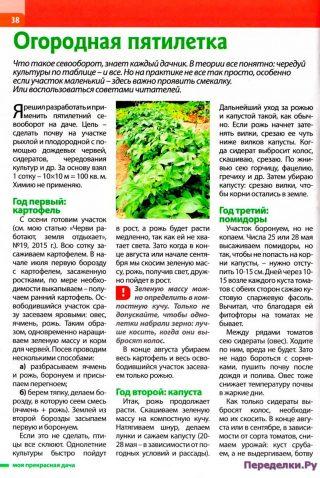 Огородная пятилетка-картофель-капуста-помидор