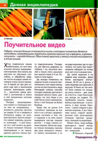 Видео про морковь