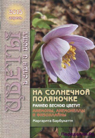 Цветы в саду и дома 4 2015