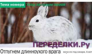 Способы защиты сада от зайцев