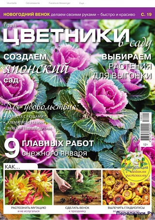 Цветники в саду №1 2018