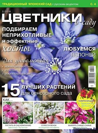 Цветники в саду №2 2018