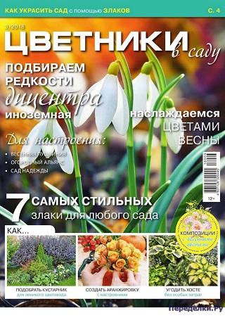 Цветники в саду №3 2018