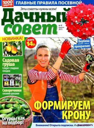 dachnyj sovet №4 2015