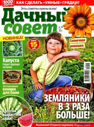 dachnyj sovet №10 2015