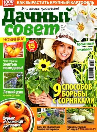 dachnyj sovet №12 2015