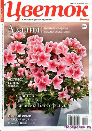 Цветок 1 15