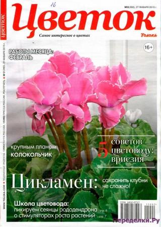 Цветок 2 15