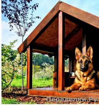 39 Дом для собаки_cr