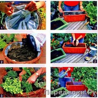 53 Сад и огород на балконе_cr