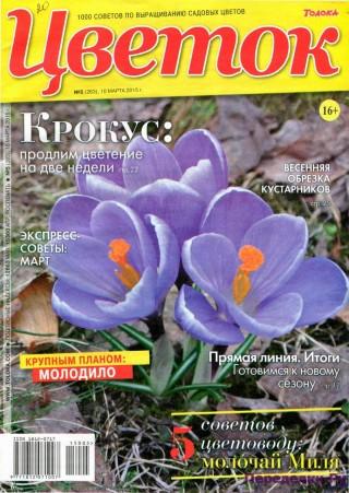Цветок 5 15