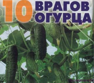10 Врагов огурцов