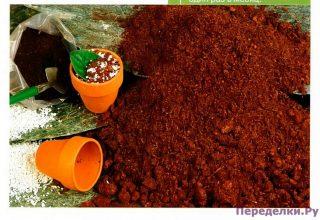 Содержание питательных веществ в почве