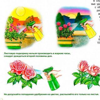 Виды удобрений