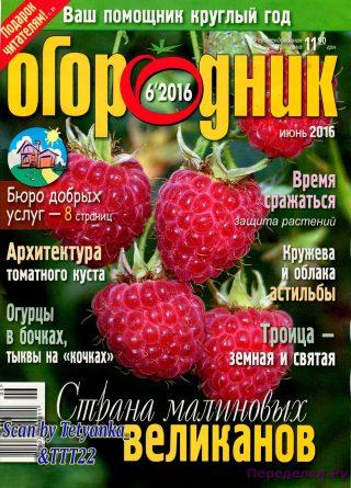 Огородник 6 2016
