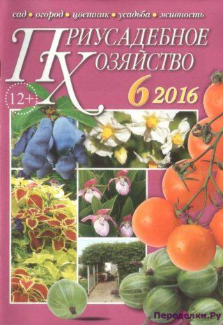 Приусадебное хозяйство 6 2016