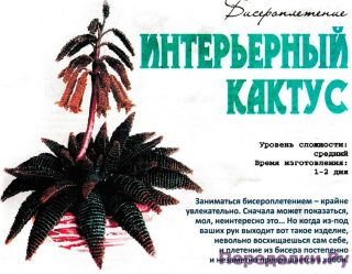 Интерьерный кактус