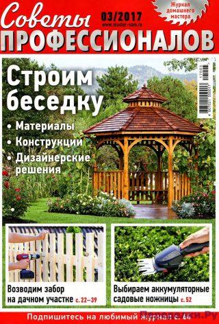 Советы профессионалов 3 2017