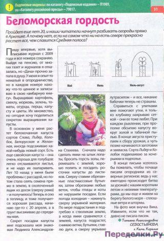 Беломорская гордость