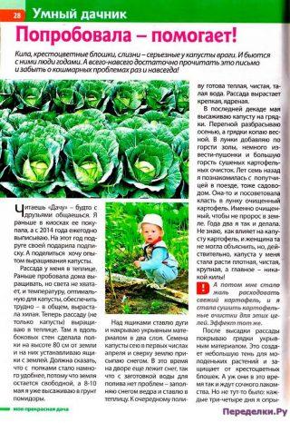 Борьба с врагами капусты