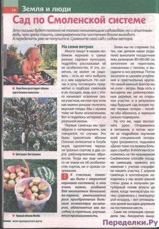 Сад по Смоленской системе