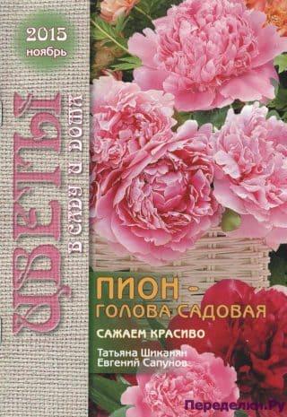Цветы в саду и дома 11 2015