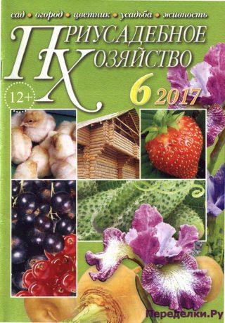 Приусадебное хозяйство 6 2017