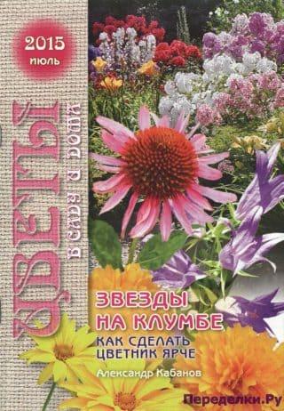 Цветы в саду и дома 7 2015