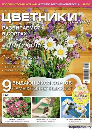 Цветники в саду №6 2018