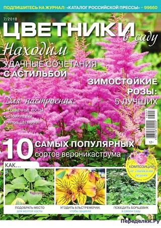 Цветники в саду №7 2018