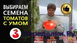 Как выбрать семена помидоров с умом