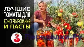 ЛУЧШИЕ ТОМАТЫ для консервирования и пасты, томат Гаспачо и Детская Сладость