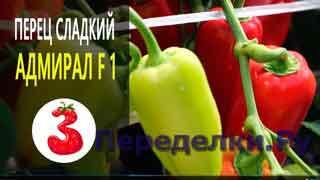 ПЕРЕЦ АДМИРАЛ F1 ранний урожай