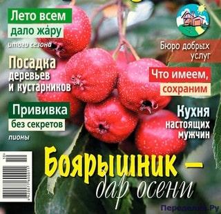 ОГОРОДНИК №10 ОКТЯБРЬ 2018
