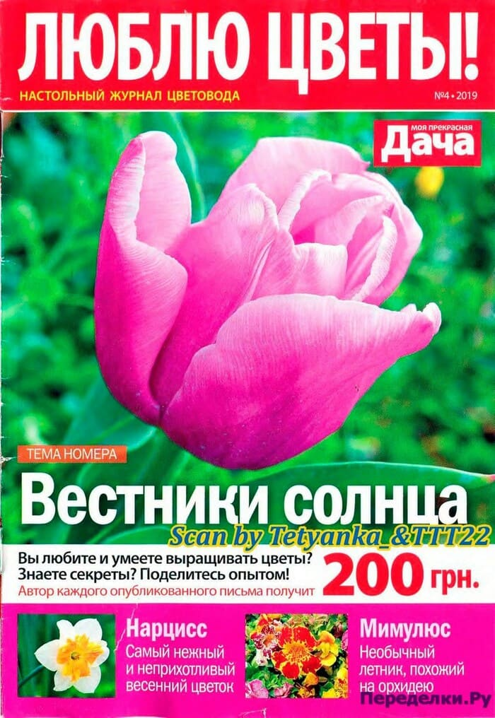 Журнал Люблю цветы №4 апрель 2019