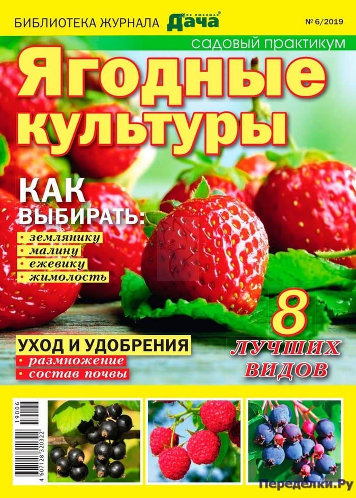 Журнал Моя любимая дача 6 2019