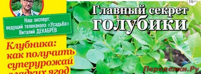 Журнал Садовод и огородник №8 апрель 2019