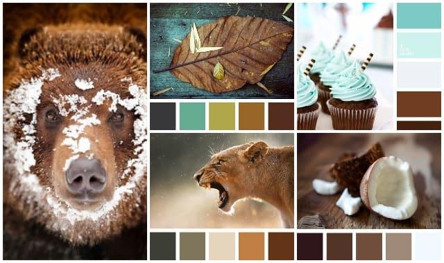 Сочетание коричневого цвета 1