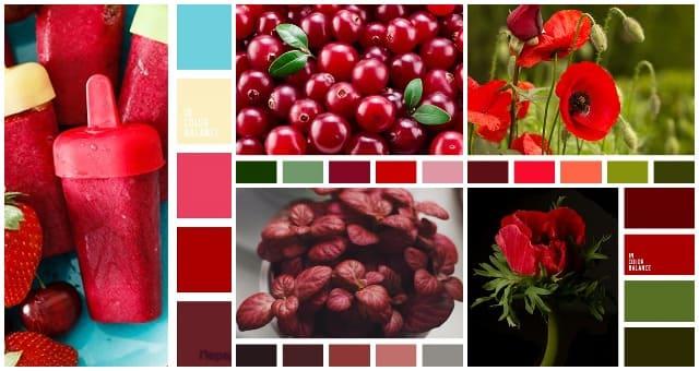 Sochetanie krasnogo cveta 1