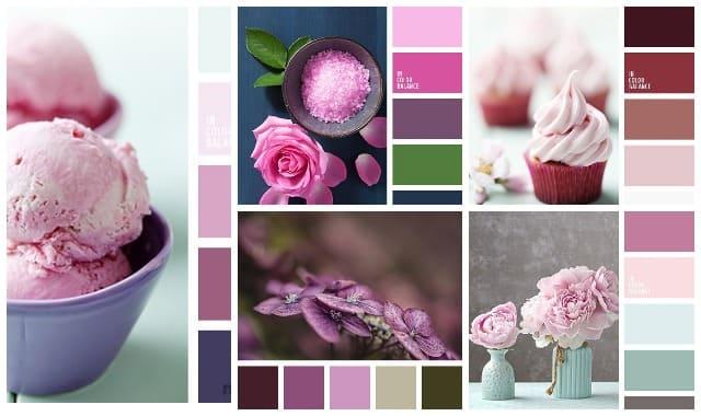 Sochetanie rozovogo cveta 5