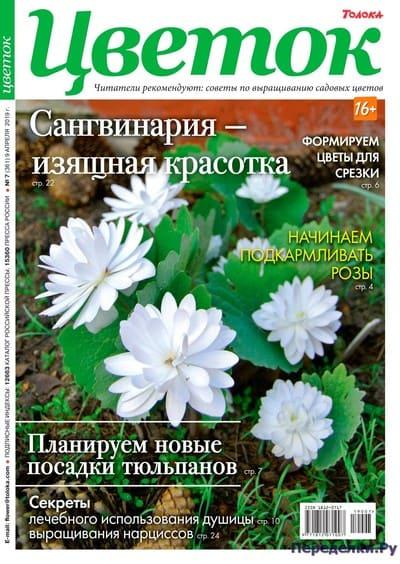 Цветок 7 (361) апрель 2019