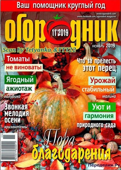 ogorodnik 11 noyabr 2019