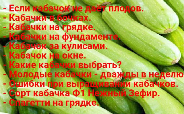 Kabachok 1