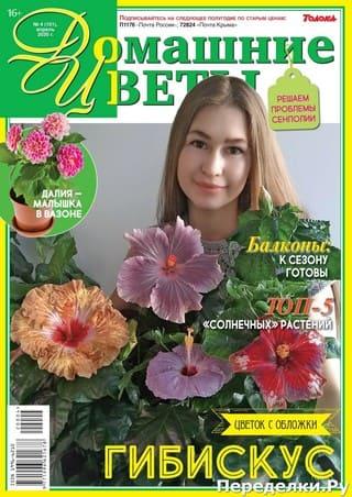 Domashnie cvety 4 aprel 2020